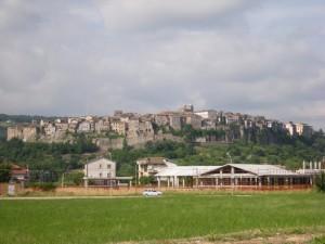 Panorama di Orte (VT) da Petignano - 05.06.2009
