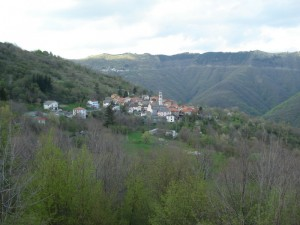 Rondanina