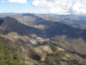 Moranego