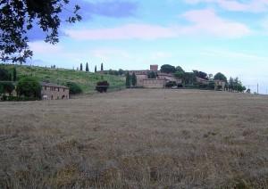 panorama di Lucignano d'Arbia