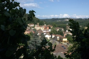 Panorama di Belveglio
