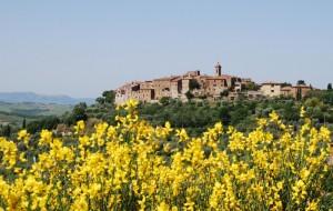 Castelmuzio di Trequanda