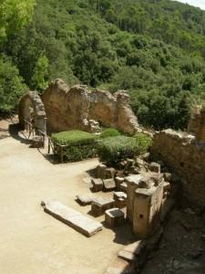 rovine medievali del castello nel Parco di Laconi