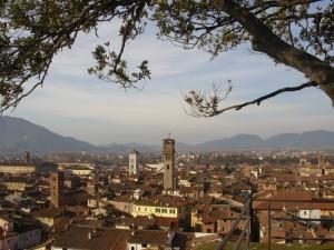 I tetti di Lucca dalla cima di Torre Giunigi