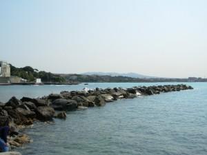 Veduta del litorale di Castiglioncello