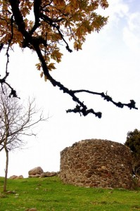 Ruderi del Castello di Buccheri