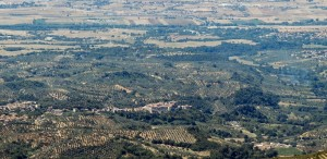 Montelibretti