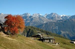 Alpe Piasci con lo sfondo del Gruppo del Bernina