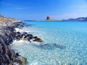 Spiaggia La Pelosa e torre avv.to n.2