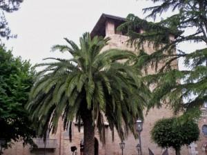 Torre Valignani.