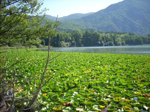 Rionero in Vulture - Monticchio il lago piccolo