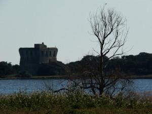 La Torre di Buranaccio