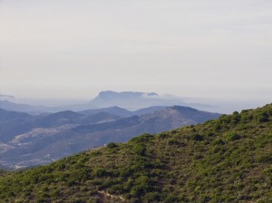 Dal monte Albo