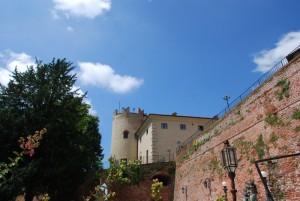 il castello con la sua torre circolare