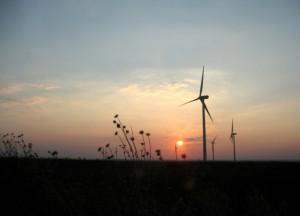 Energia eolica, la forza del vento