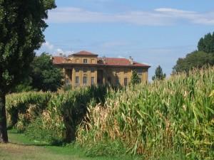 Granturco e gran villa
