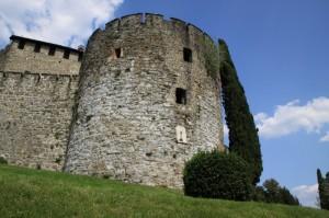 Cipresso che abbraccia la torre