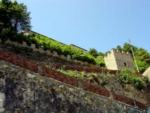 Verso il castello