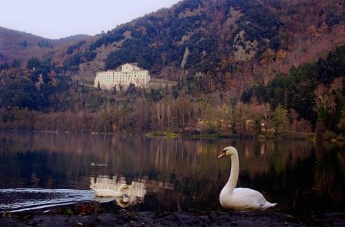 Rionero in Vulture - Il lago dei cigni