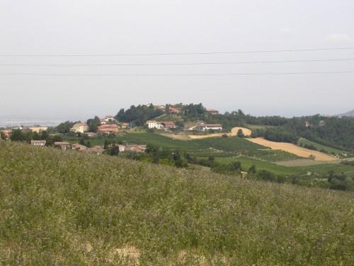 Pozzol Groppo - Campi e vigne