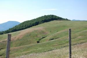 """Desolate terre di Lucania"""