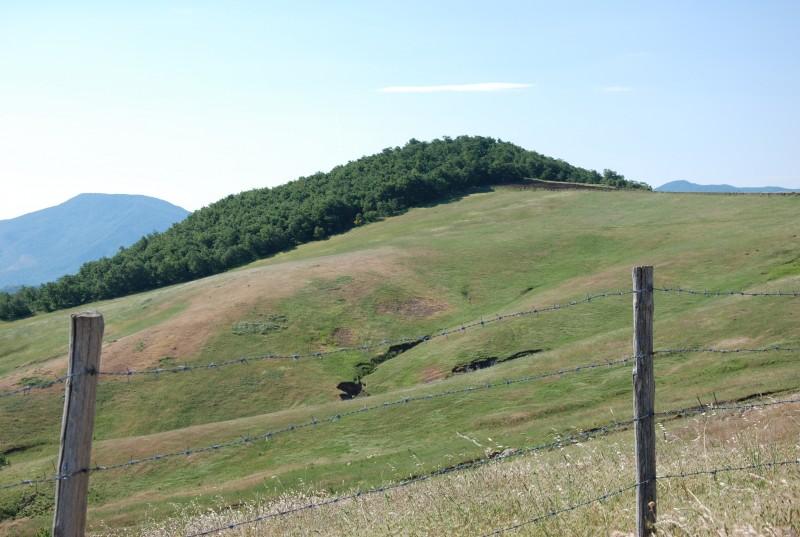 """''""""Desolate terre di Lucania""""'' - Tricarico"""