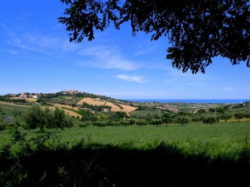 Montone - Montone e uno spicchio di Adriatico