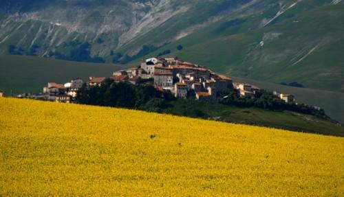 Norcia - Castelluccio di Norcia in giallo!