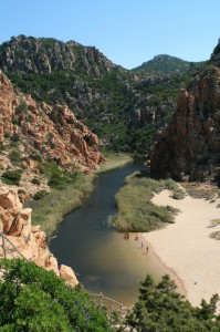 Canyon sardi