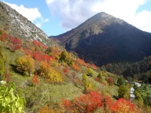 autunno a Upega, frazione del comune di Briga Alta, Val Tanaro
