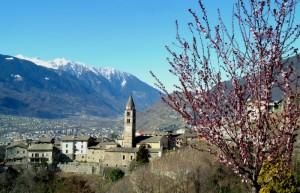 Primavera a Montagna in Valtellina