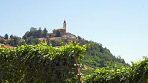 San Marzano Oliveto - Panorama