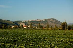dal campo di zucche al panorama di Sezze