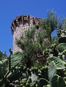Castello di Suio Alto