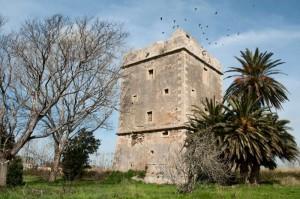 Torre Maccarese