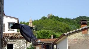 Messaggio del Balivo dal castello al comandante della torre