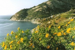 Chiessi, costa ovest dell'Elba