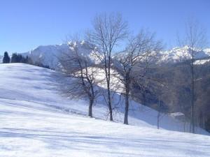 Gita invernale sul monte Farno