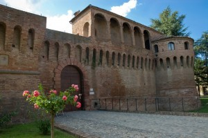 Rocca Sforzesca - entrata