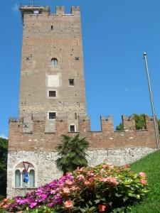 Torre Vanga…Asso di fiori