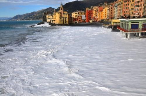 Camogli - Camogli..sembra neve..