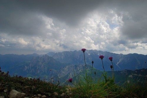 Valli del Pasubio - il Cornetto e Cima Carega