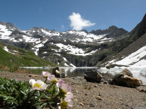 Formazza - Lago Nero.