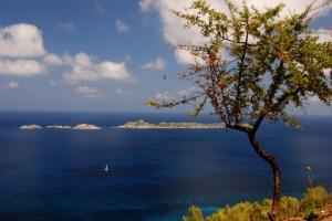 Isola di Serpentara