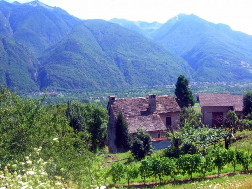 Beura-Cardezza - mi ricordo montagne verdi...