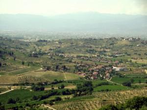 Strada dell'olio e del vino del Montalbano.