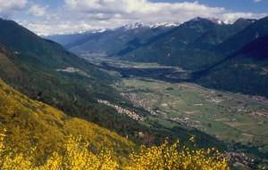 La valle e in primo piano il paese di Buglio