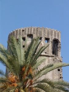 Torre Ciapela celata dalla palma