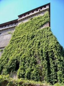 Castello Ruspoli…Particolare
