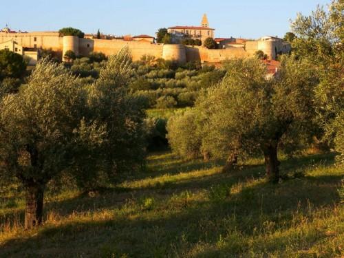 Magliano in Toscana - Magliano in Toscana